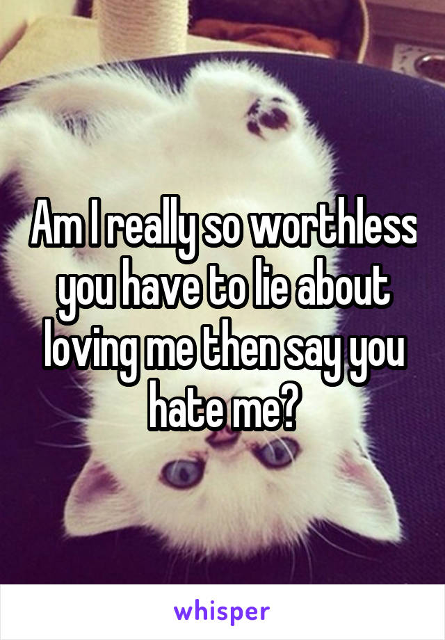 Am I really so worthless you have to lie about loving me then say you hate me?