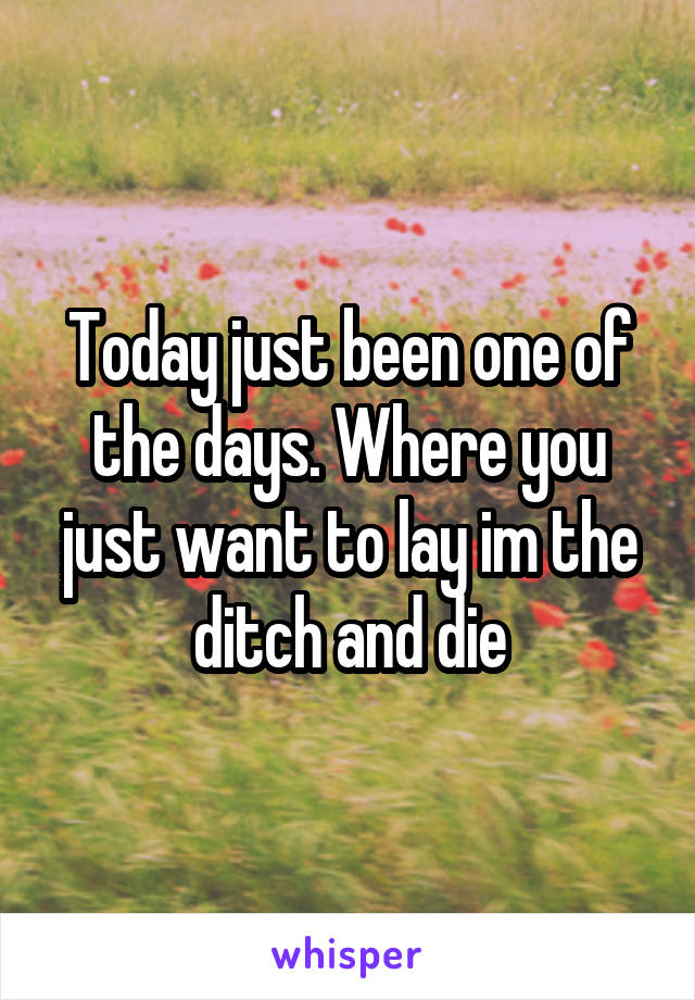 Today just been one of the days. Where you just want to lay im the ditch and die