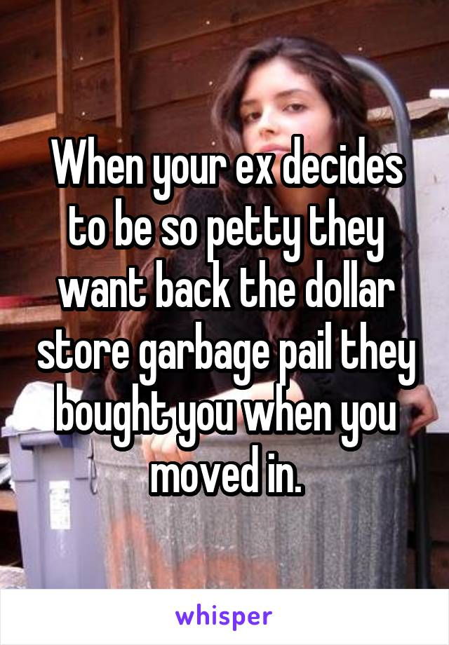 When your ex decides to be so petty they want back the dollar store garbage pail they bought you when you moved in.