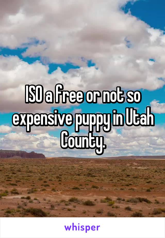ISO a free or not so expensive puppy in Utah County.