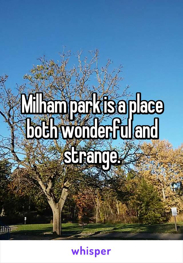 Milham park is a place both wonderful and strange.