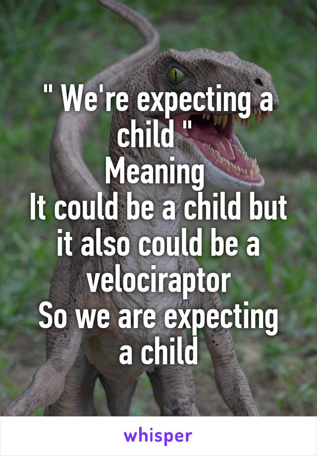 """ We're expecting a child ""  Meaning  It could be a child but it also could be a velociraptor So we are expecting a child"