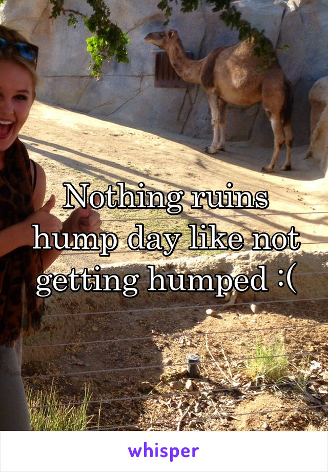 Nothing ruins hump day like not getting humped :(