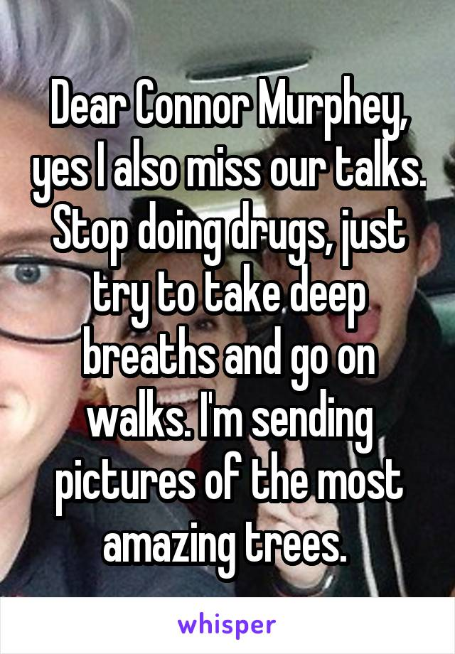 Dear Connor Murphey, yes I also miss our talks. Stop doing drugs, just try to take deep breaths and go on walks. I'm sending pictures of the most amazing trees.
