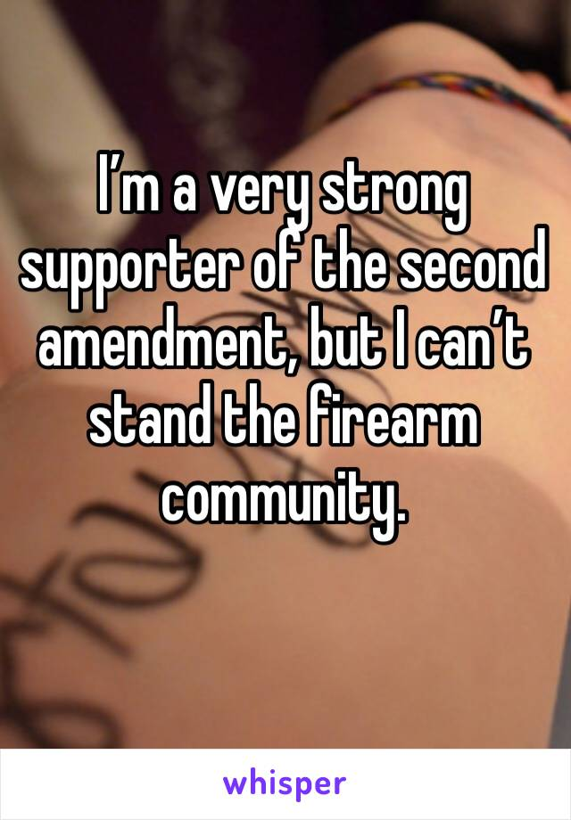 I'm a very strong supporter of the second amendment, but I can't stand the firearm community.