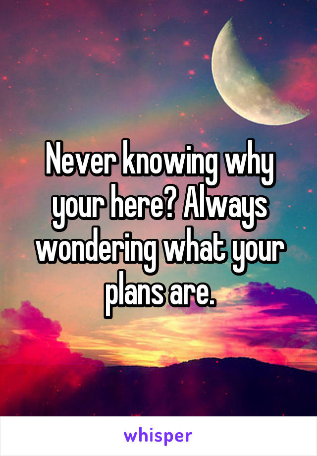 Never knowing why your here? Always wondering what your plans are.