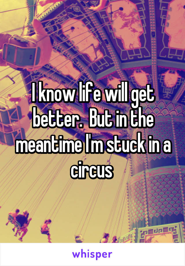 I know life will get better.  But in the meantime I'm stuck in a circus