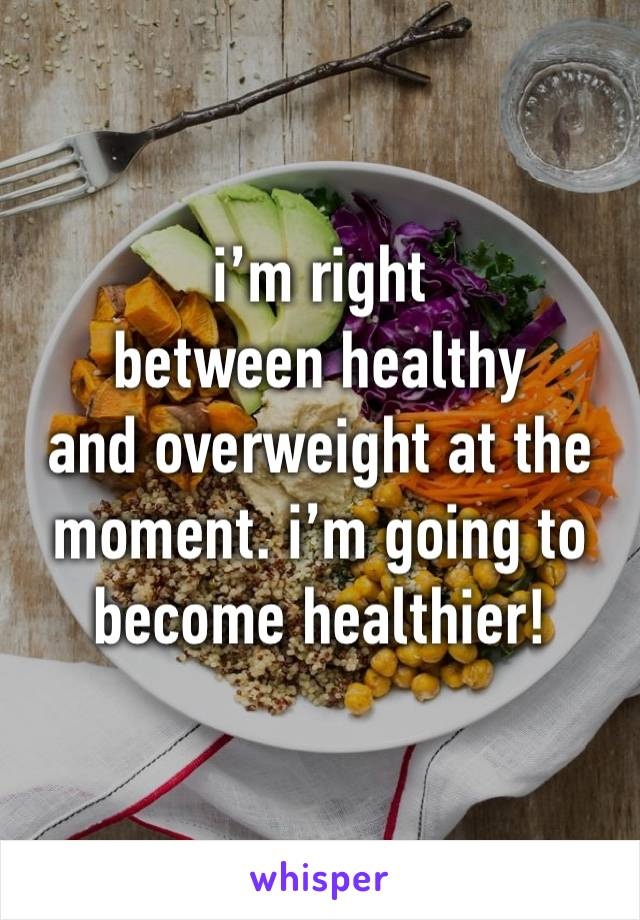 i'm right  between healthy and overweight at the moment. i'm going to become healthier!