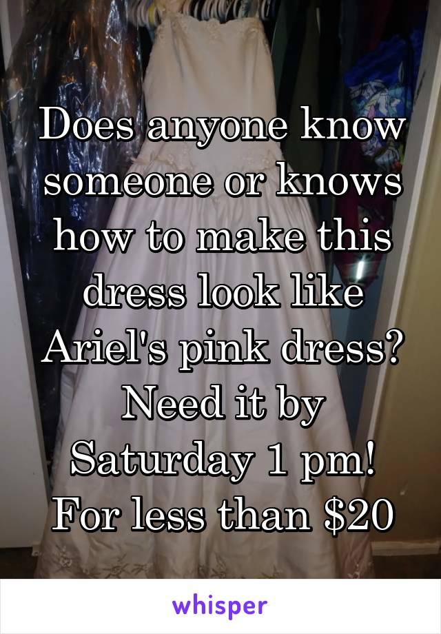 Does anyone know someone or knows how to make this dress look like Ariel's pink dress? Need it by Saturday 1 pm! For less than $20