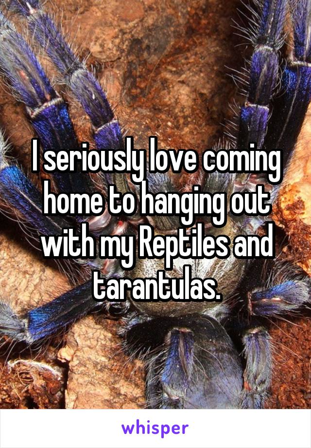 I seriously love coming home to hanging out with my Reptiles and tarantulas.