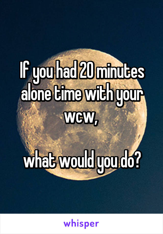 If you had 20 minutes alone time with your wcw,   what would you do?
