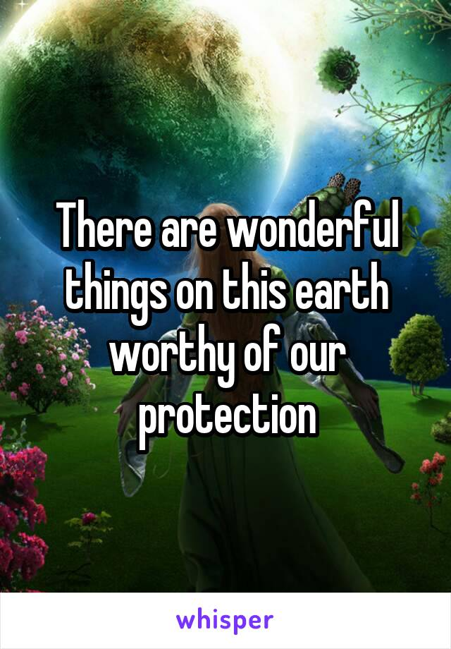 There are wonderful things on this earth worthy of our protection