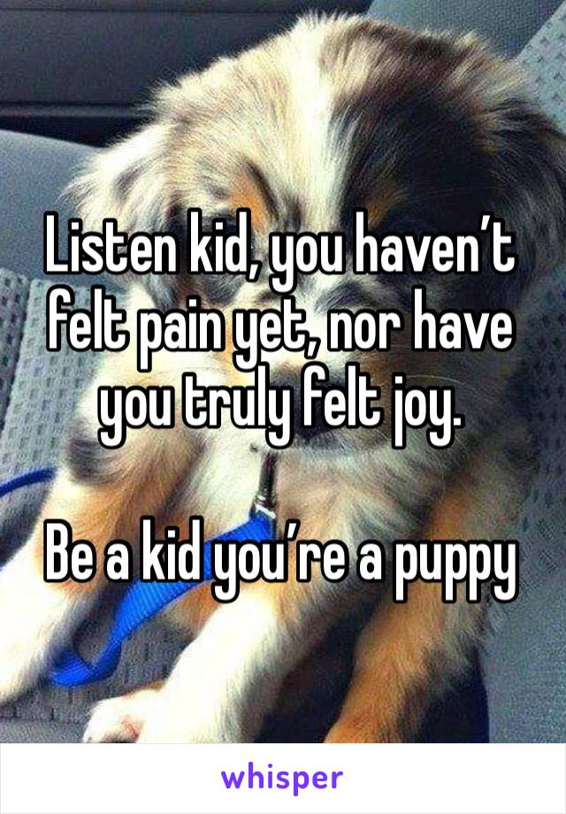Listen kid, you haven't felt pain yet, nor have you truly felt joy.      Be a kid you're a puppy