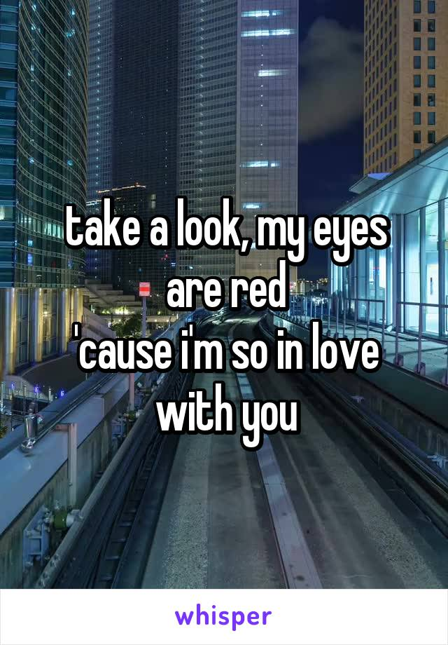 take a look, my eyes are red 'cause i'm so in love with you