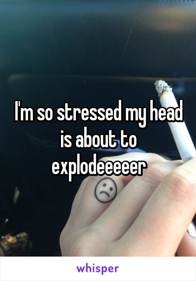 I'm so stressed my head is about to explodeeeeer