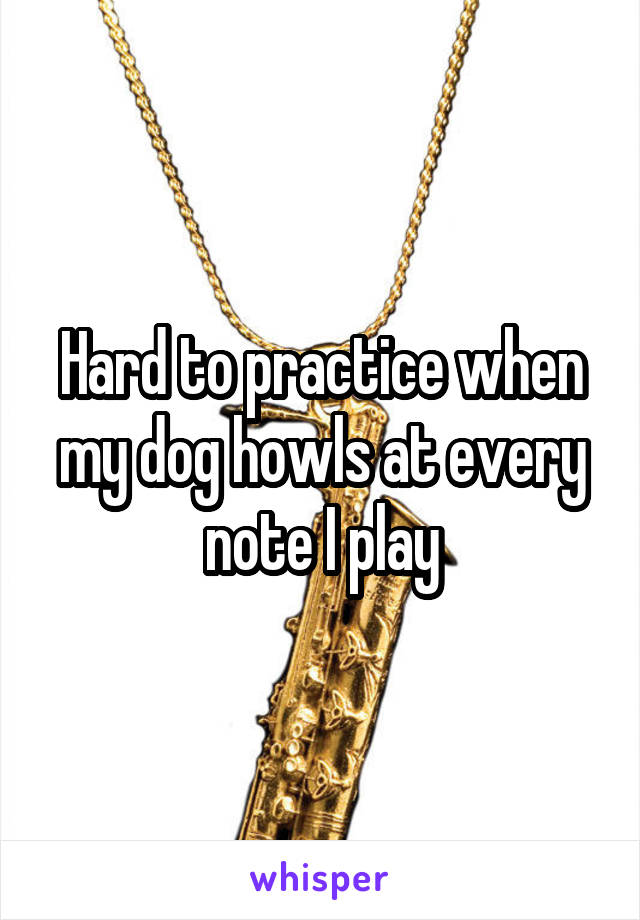 Hard to practice when my dog howls at every note I play
