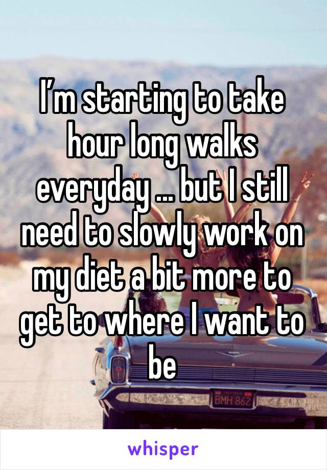 I'm starting to take hour long walks everyday ... but I still need to slowly work on my diet a bit more to get to where I want to be