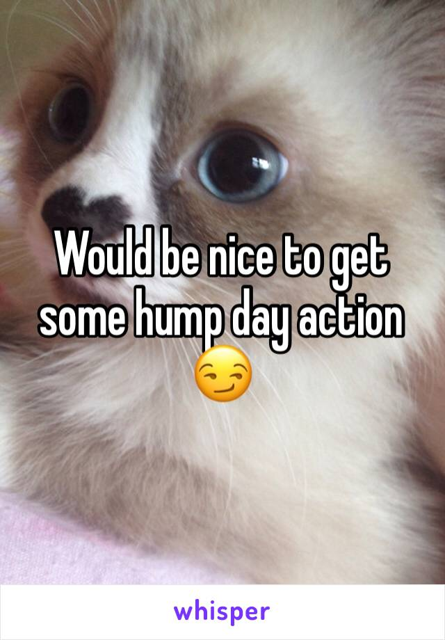 Would be nice to get some hump day action 😏