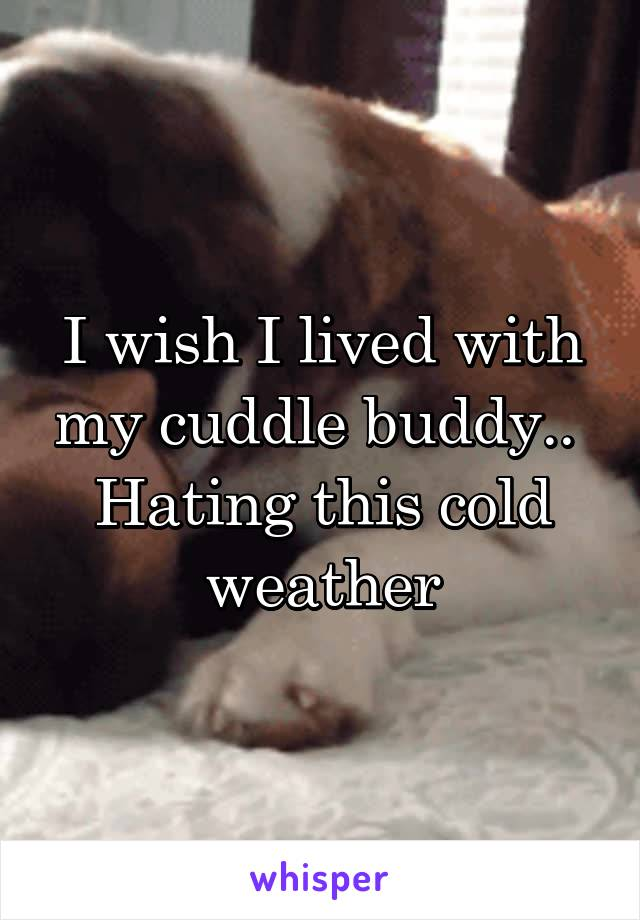 I wish I lived with my cuddle buddy..  Hating this cold weather