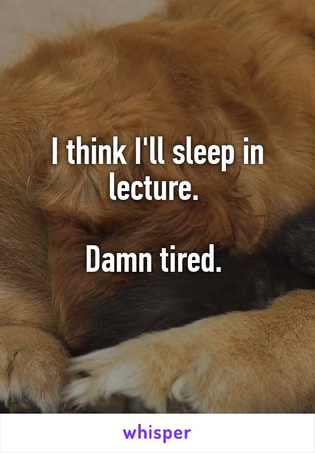 I think I'll sleep in lecture.   Damn tired.