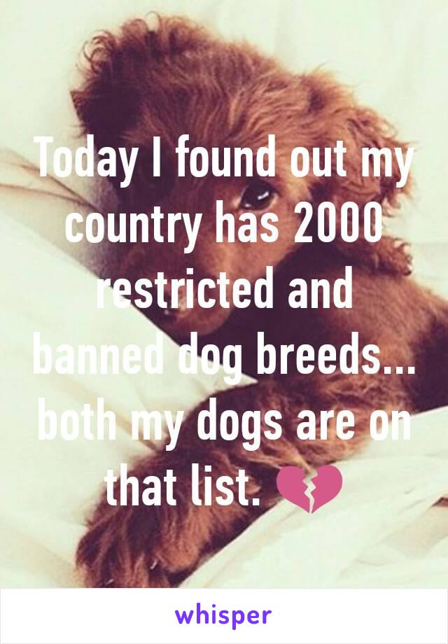 Today I found out my country has 2000 restricted and banned dog breeds... both my dogs are on that list. 💔