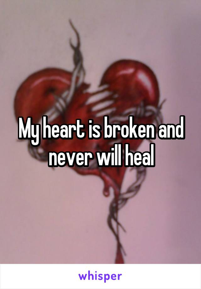 My heart is broken and never will heal