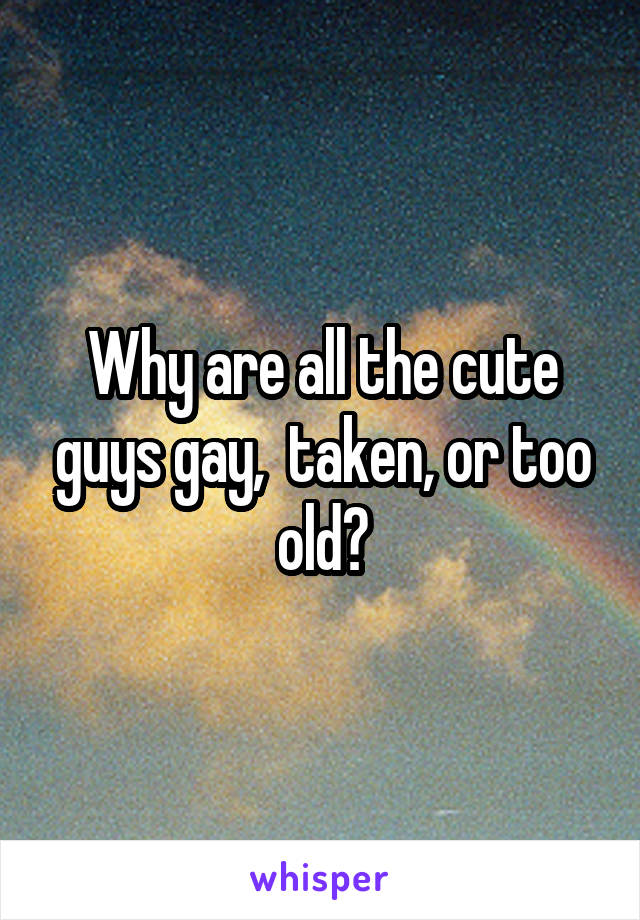 Why are all the cute guys gay,  taken, or too old?