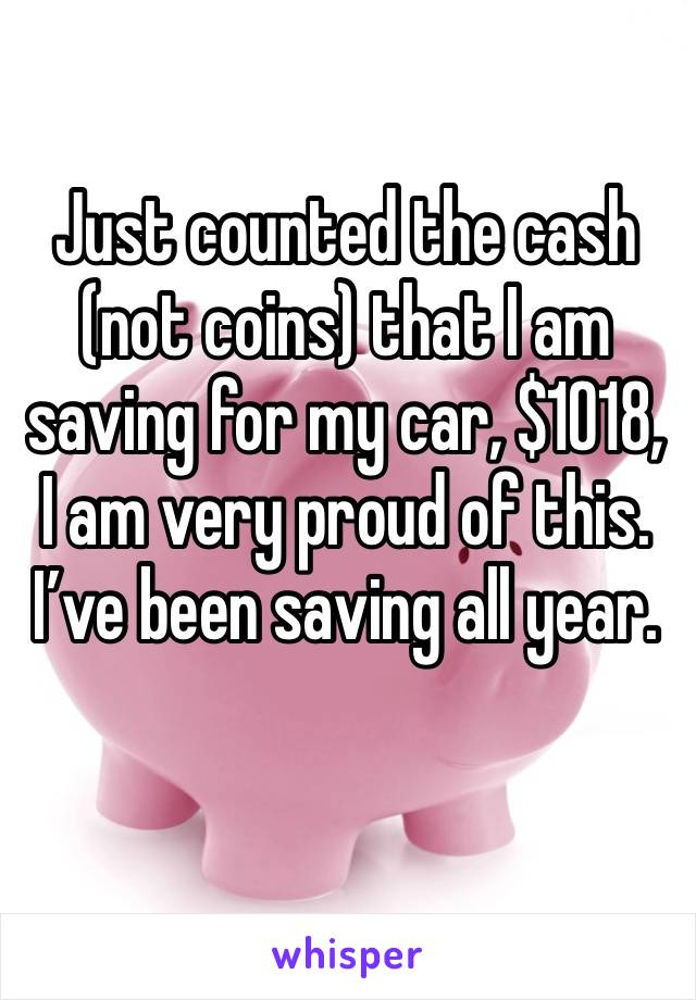 Just counted the cash (not coins) that I am saving for my car, $1018, I am very proud of this. I've been saving all year.