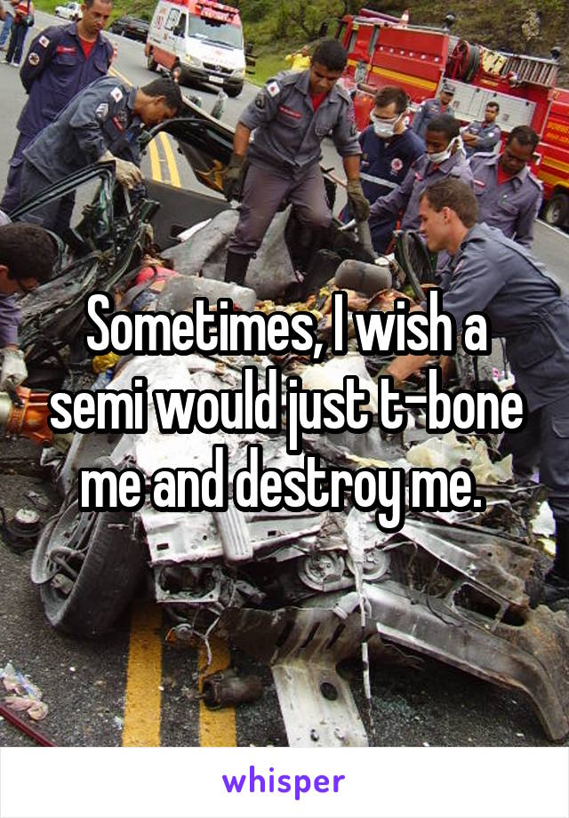 Sometimes, I wish a semi would just t-bone me and destroy me.