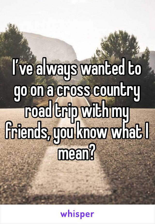 I've always wanted to go on a cross country road trip with my friends, you know what I mean?