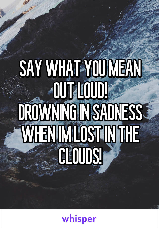SAY WHAT YOU MEAN OUT LOUD! DROWNING IN SADNESS WHEN IM LOST IN THE CLOUDS!
