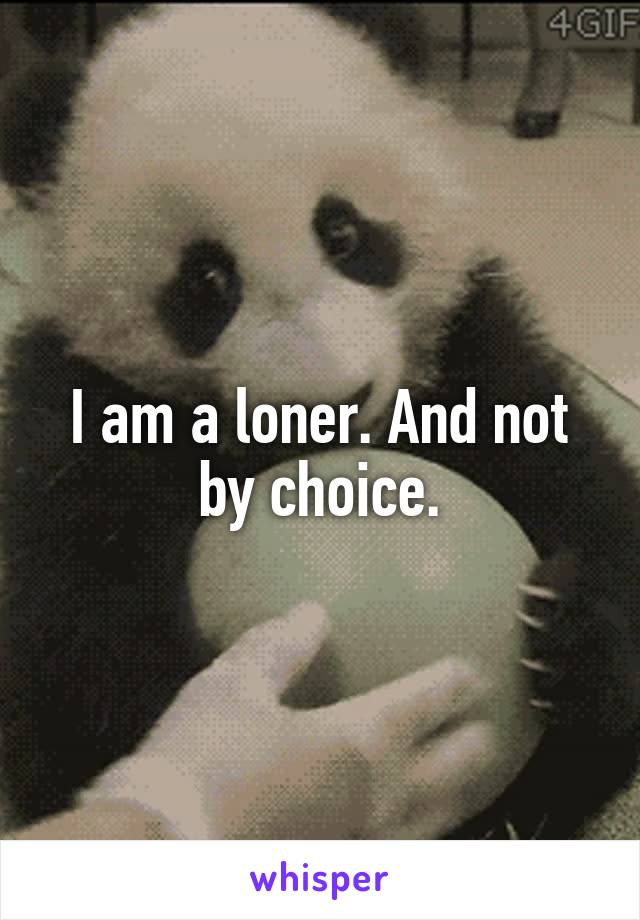 I am a loner. And not by choice.