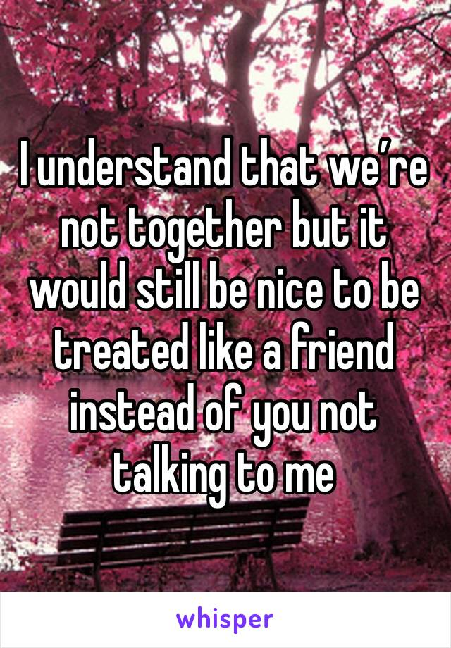 I understand that we're not together but it would still be nice to be treated like a friend instead of you not talking to me