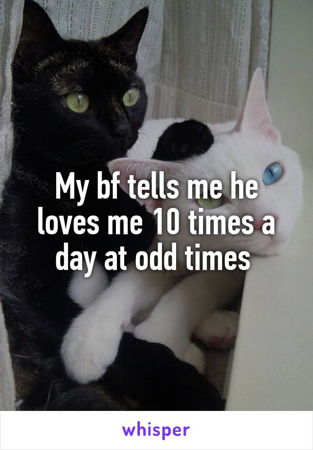 My bf tells me he loves me 10 times a day at odd times