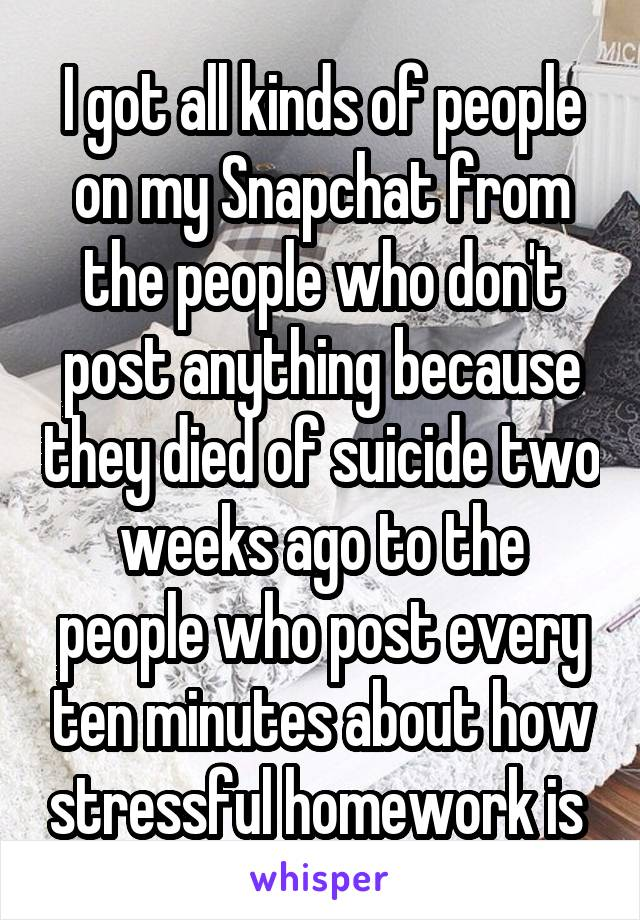 I got all kinds of people on my Snapchat from the people who don't post anything because they died of suicide two weeks ago to the people who post every ten minutes about how stressful homework is