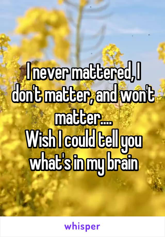 I never mattered, I don't matter, and won't matter.... Wish I could tell you what's in my brain