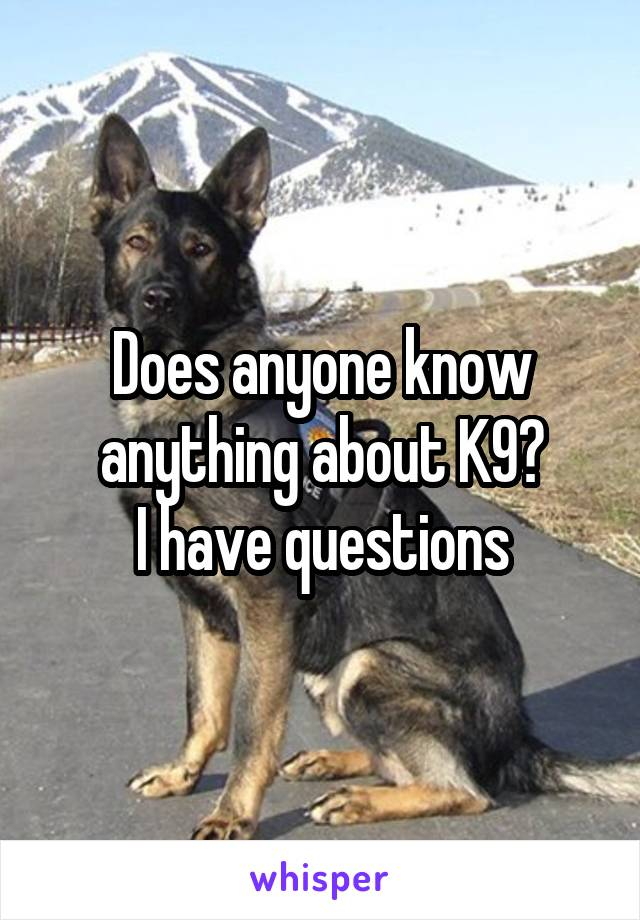 Does anyone know anything about K9? I have questions