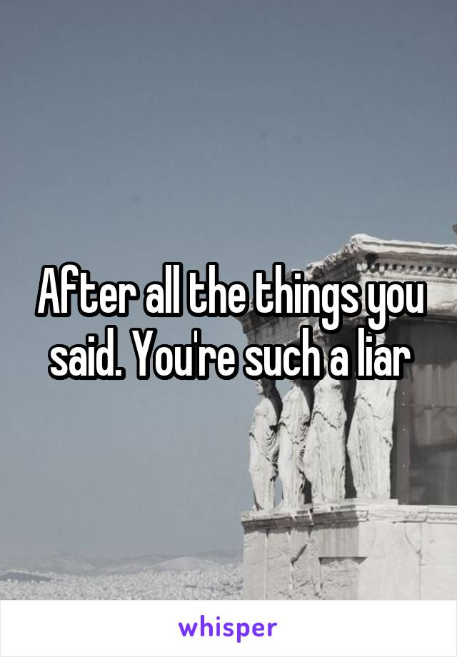 After all the things you said. You're such a liar
