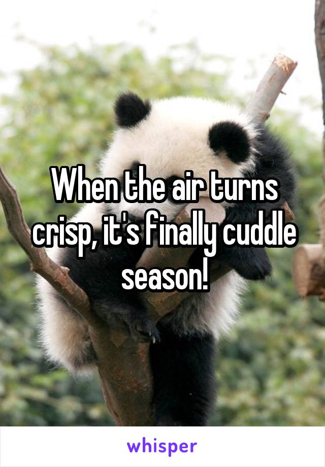 When the air turns crisp, it's finally cuddle season!