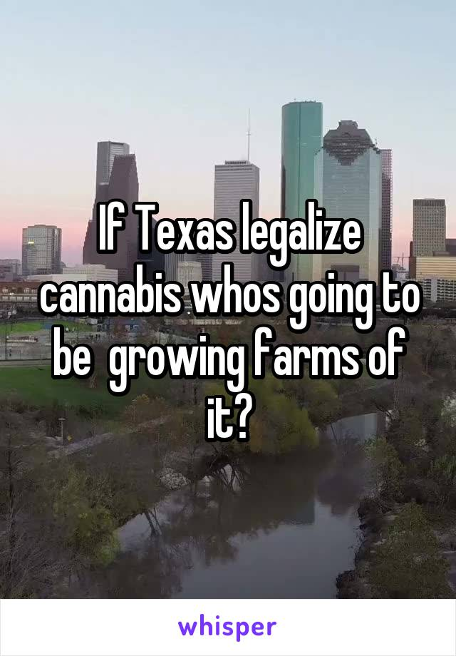 If Texas legalize cannabis whos going to be  growing farms of it?