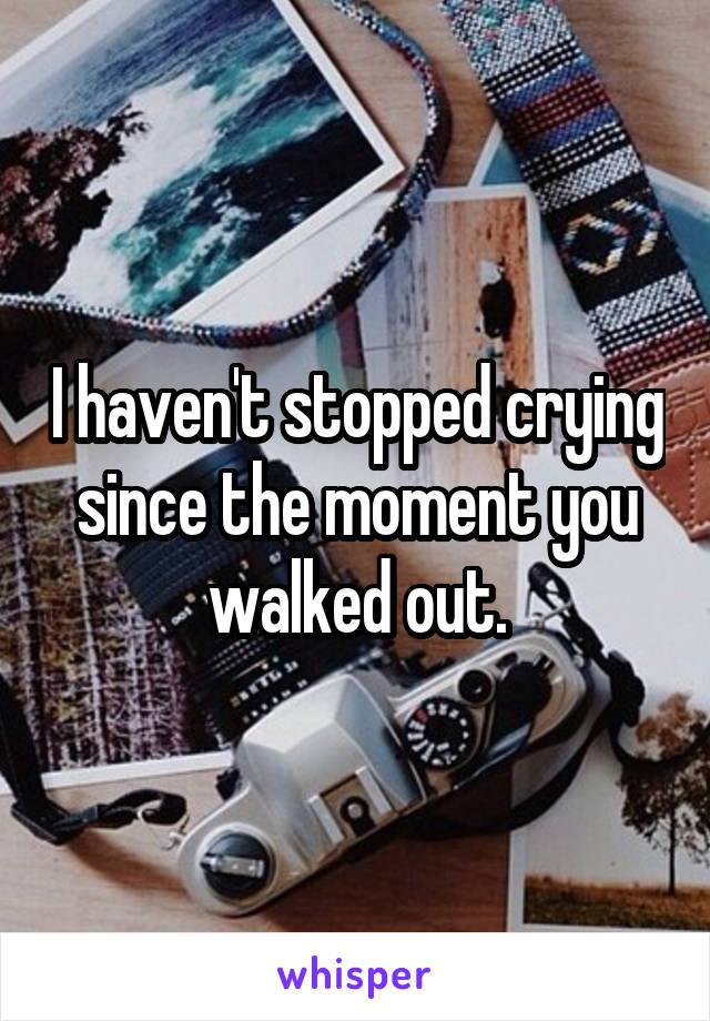I haven't stopped crying since the moment you walked out.