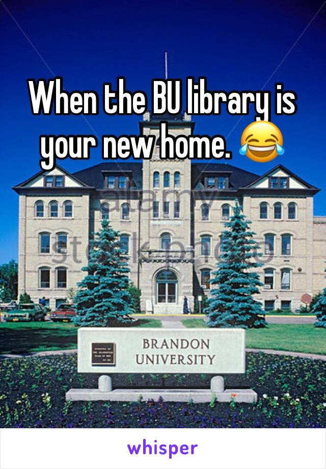 When the BU library is your new home. 😂