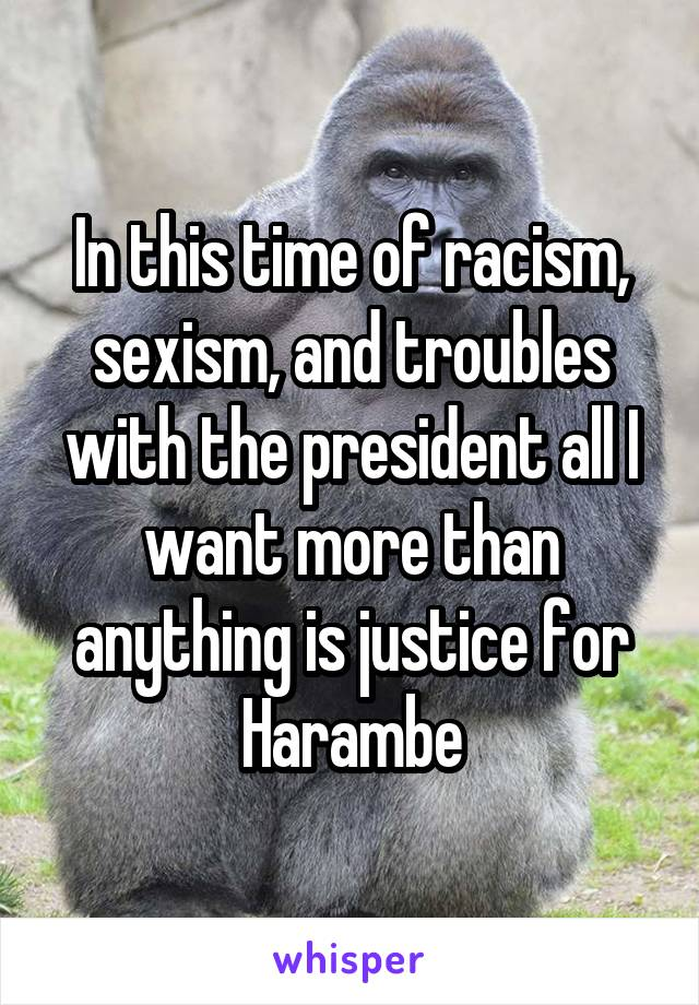 In this time of racism, sexism, and troubles with the president all I want more than anything is justice for Harambe