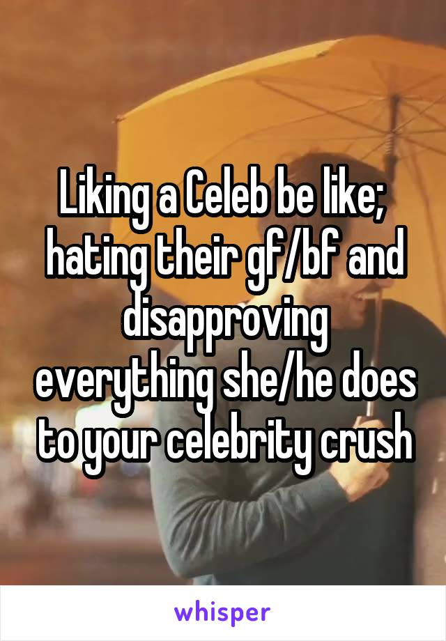 Liking a Celeb be like;  hating their gf/bf and disapproving everything she/he does to your celebrity crush