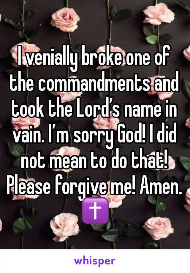 I venially broke one of the commandments and took the Lord's name in vain. I'm sorry God! I did not mean to do that! Please forgive me! Amen. ✝️