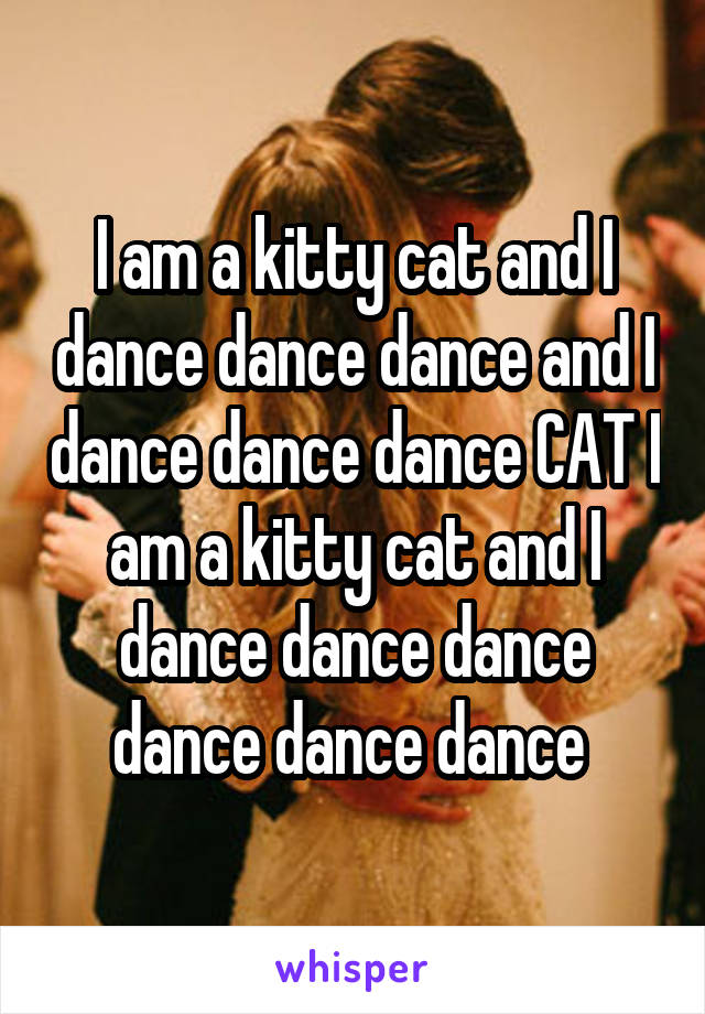 I am a kitty cat and I dance dance dance and I dance dance dance CAT I am a kitty cat and I dance dance dance dance dance dance