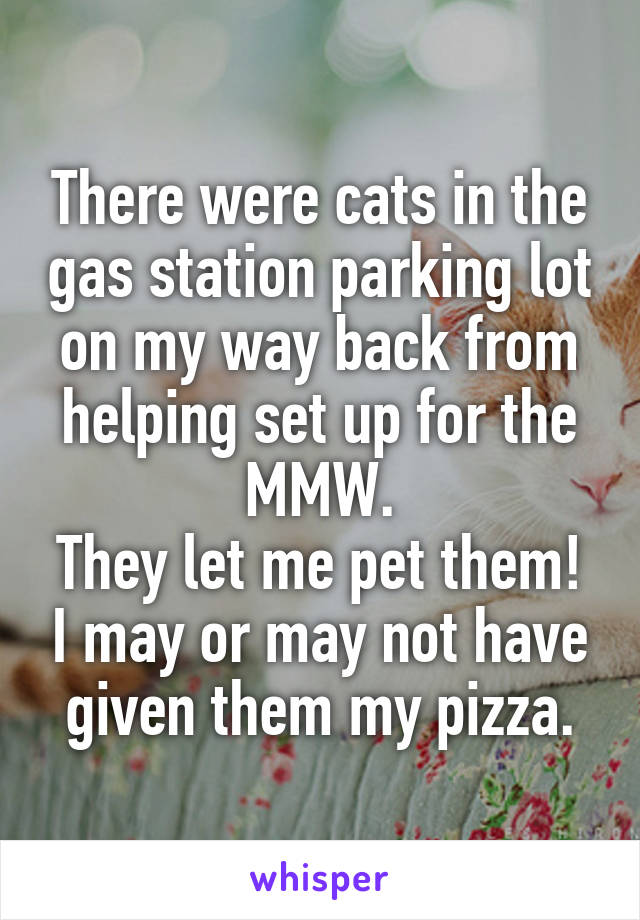 There were cats in the gas station parking lot on my way back from helping set up for the MMW. They let me pet them! I may or may not have given them my pizza.