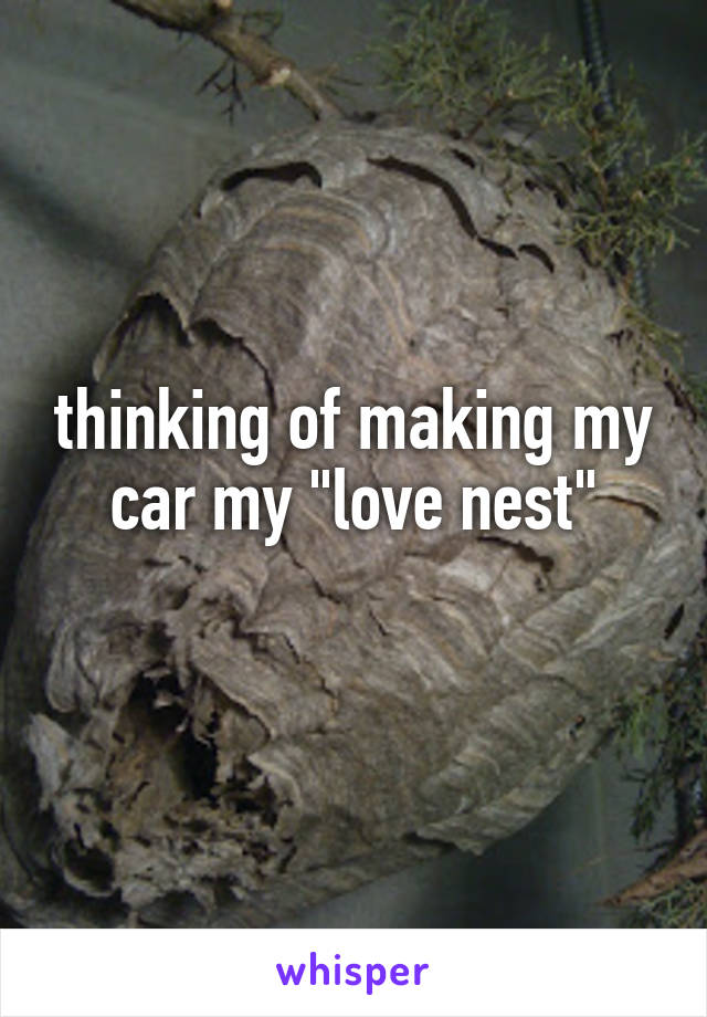 "thinking of making my car my ""love nest"""