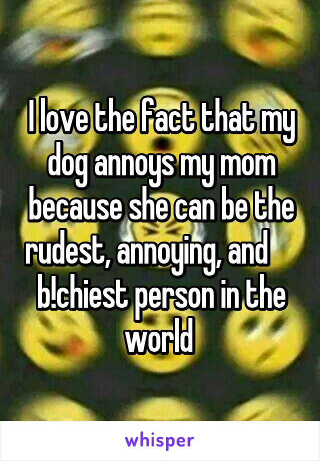 I love the fact that my dog annoys my mom because she can be the rudest, annoying, and      b!chiest person in the world