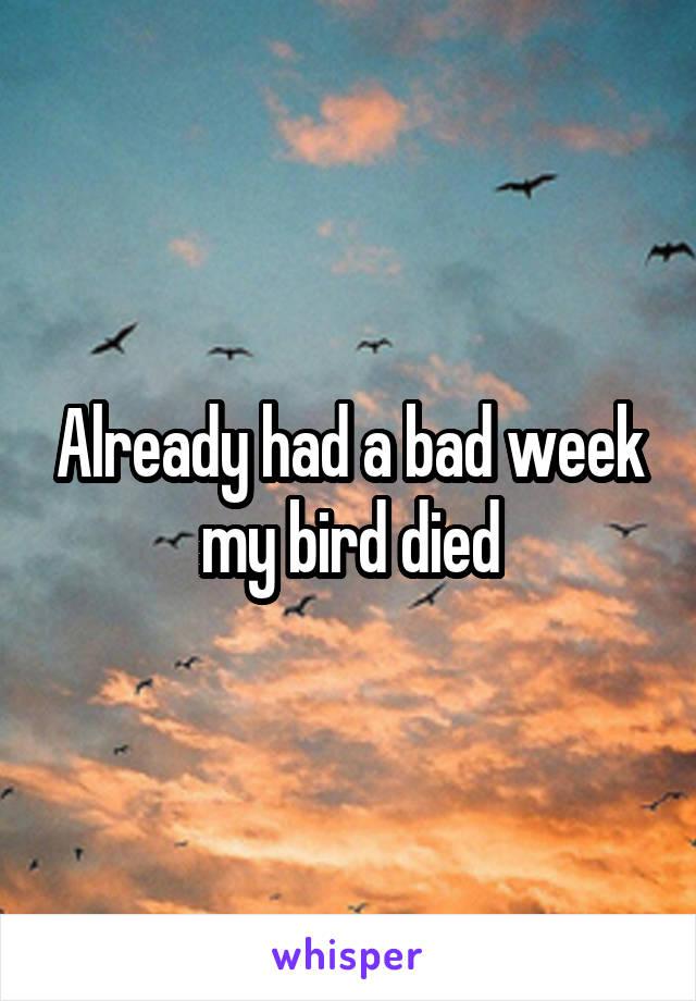 Already had a bad week my bird died